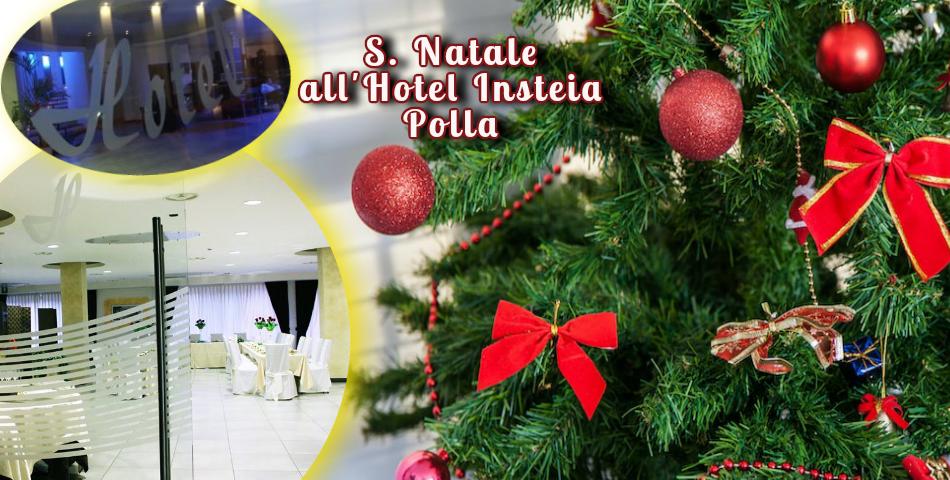 Menù di Natale e Cenone di S.Silvestro all'Hotel insteia